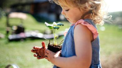 Photo of Naturschutz mit Kindern: Artenvielfalt als Familie fördern